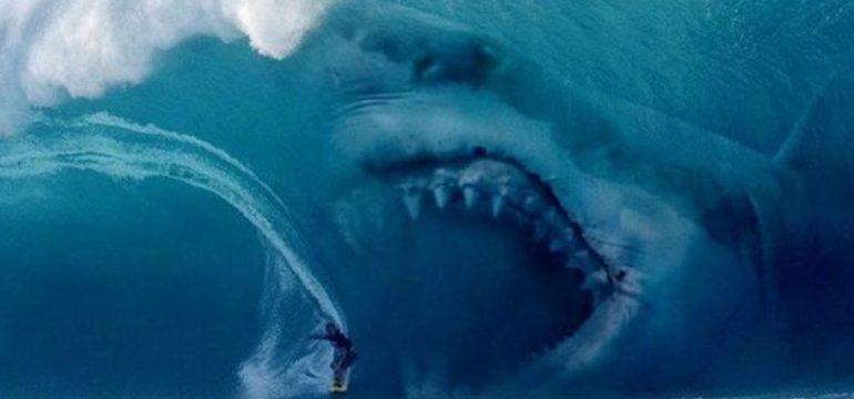 meg-rimandato-all-estate-2018-film-sul-grande-squalo-bianco-v3-286548-1280x720